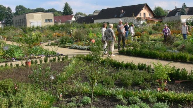 Gartenbesichtigung